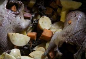 Recettes du pigeon en cocotte, des plats originaux